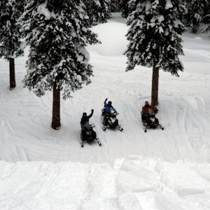 Golden bc sledding