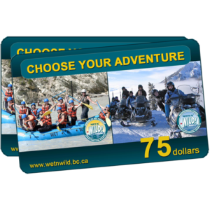 Rafting or Snowmobiling Gift Cards
