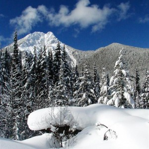 BC snowmobile tours