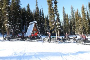 snowmobile tours in golden bc