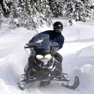 Learn how to Snowmobile on our Tours in Golden