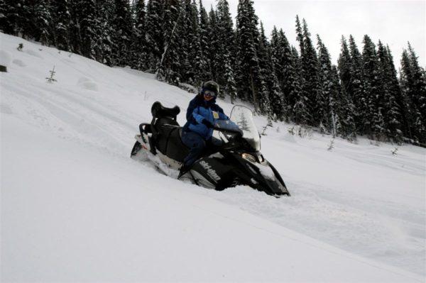 sledding golden bc