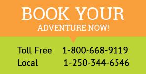 Book snowmobile tours golden