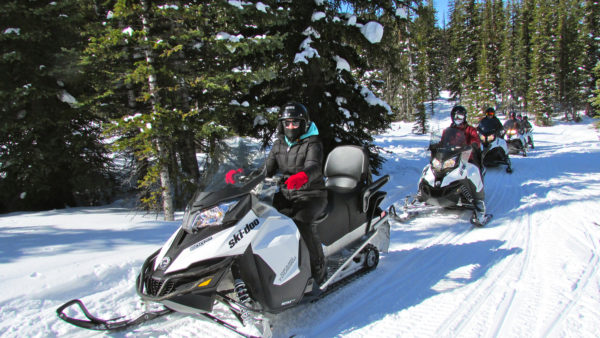 A group on their guided snowmobile tour with White N Wild in Golden BC
