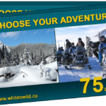 white n wild gift card
